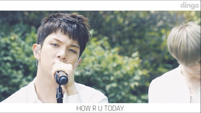 엔플라잉 HOW R U TODAY BGM LIVE 라이브