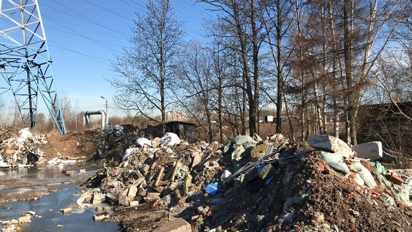 Радиоактивный хлам оказался лишь верхушкой мусорного айсберга в Кудрово, изображение №6