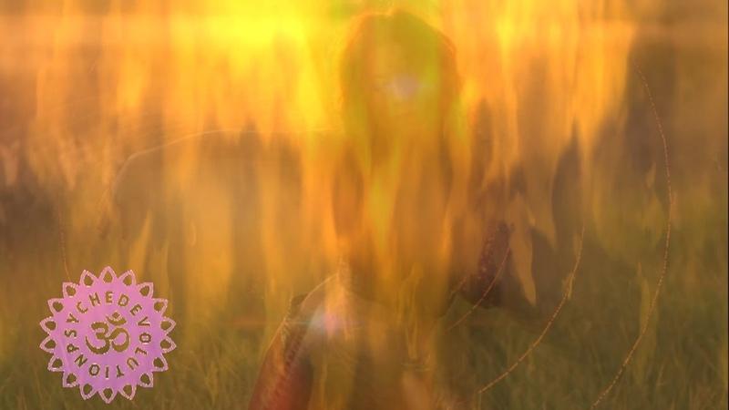 Liquid Bloom Resonant Migration feat Deya Dova Temple Step Project Ambient Remix