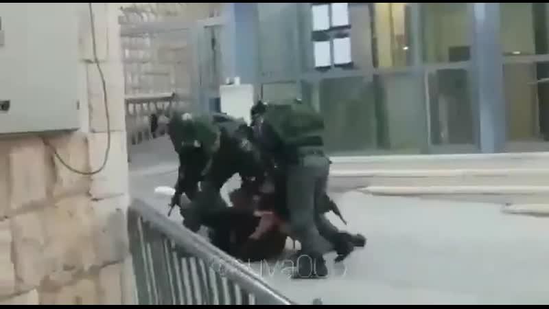 EN PALESTINE ERIC GARNER GEORGES FLOYD C'EST QUOTIDIEN