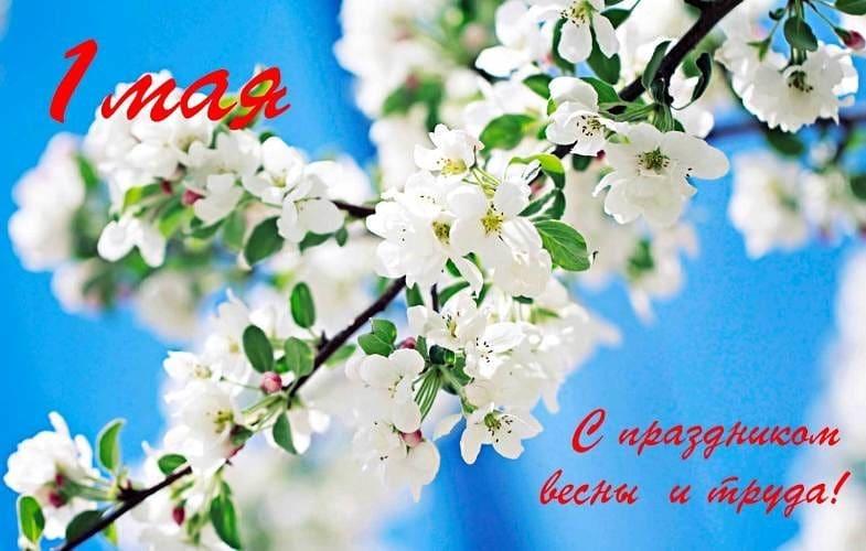 Сегодня, в первый майский день, в нашей стране отмечается праздник Весны и Труда