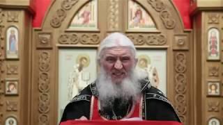 Священик проклял Путина и призвал выдворить его в Биробиджан